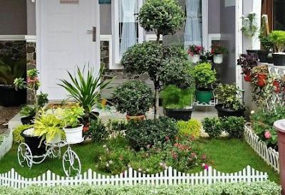 cara menata taman depan rumah - dekorasi rumah