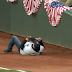 Mariners fan falls over wall, fails to grab foul ball (Video)
