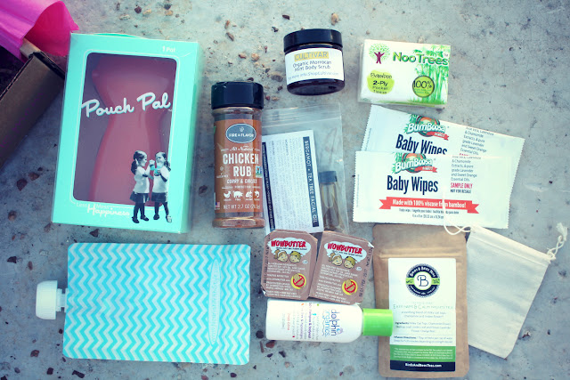 The Ecocentric Mom Eco-Friendly Subscription Box!! {a review}