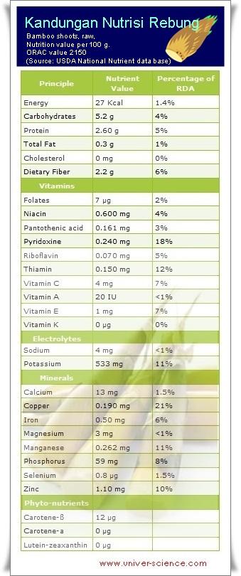 Manfaat Rebung Bagi Kesehatan Tubuh Dan Kandungan Nutrisinya