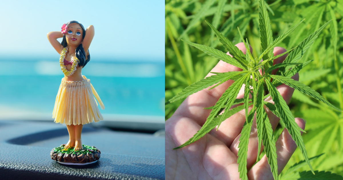 Hawaii Became The 26th US State To Decriminalize Marijuana