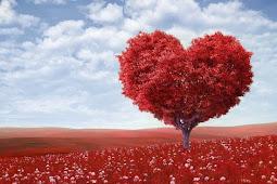 Cara Membuat Wanita Yang Baru Kenal Jatuh Cinta