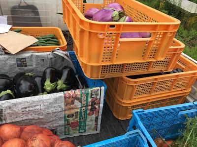 北杜野菜のトラック販売 (宇宙ブルーイング)