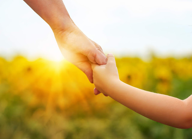 Parent and child holding hands as the sunsets over flowers behind them