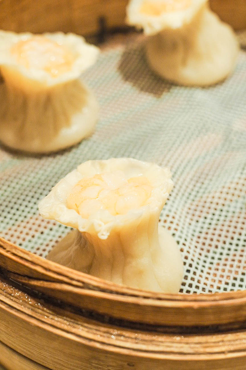 Prawn and scallop shumai