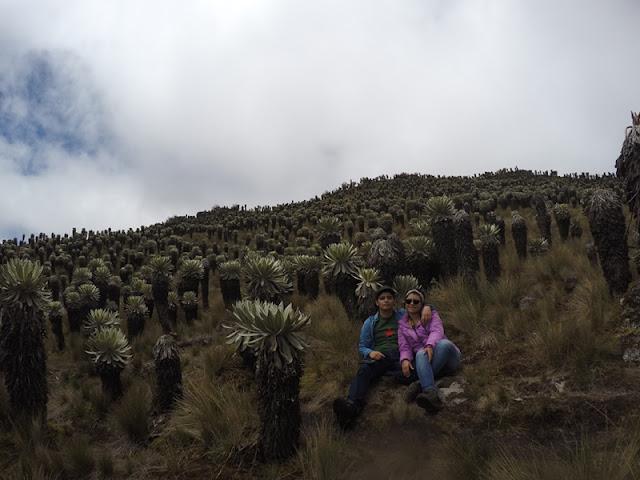 Destinos de Colombia: Páramo de Ocetá
