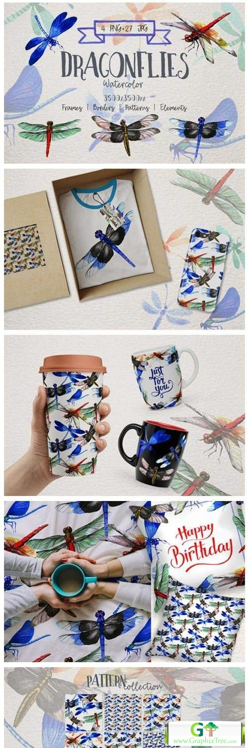 Insect Dragonfly PNG Watercolor Set [Stock Image] [illustrations]