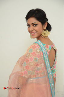 Actress Priyanka Bharadwaj Pictures in Saree at Mister 420 Press Meet  0036.JPG