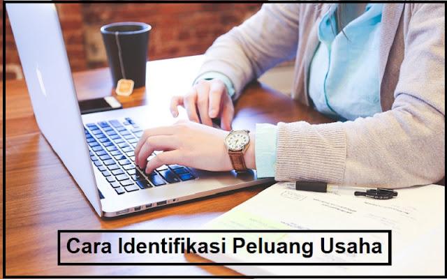 identifikasi peluang usaha