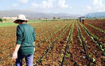 Η γυναίκα αγρότισσα είναι ο αφανής ήρωας της υπαίθρου