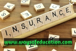 IRDA allows life insurance companies to issue e-insurance policies