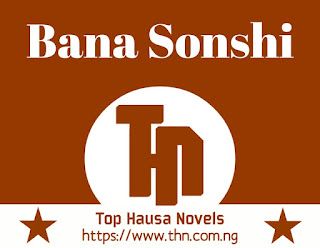 Bana Sonshi