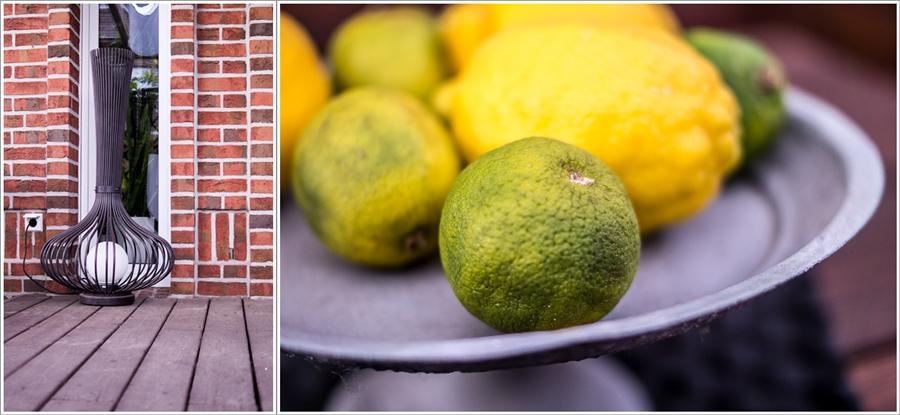 Blog + Fotografie by it's me | fim.works | Ein Garten im Norden | Tortenteller mit Zitronen und Limetten | Außenleuchte aus Metall