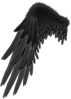 Devil wings photoediting wing png