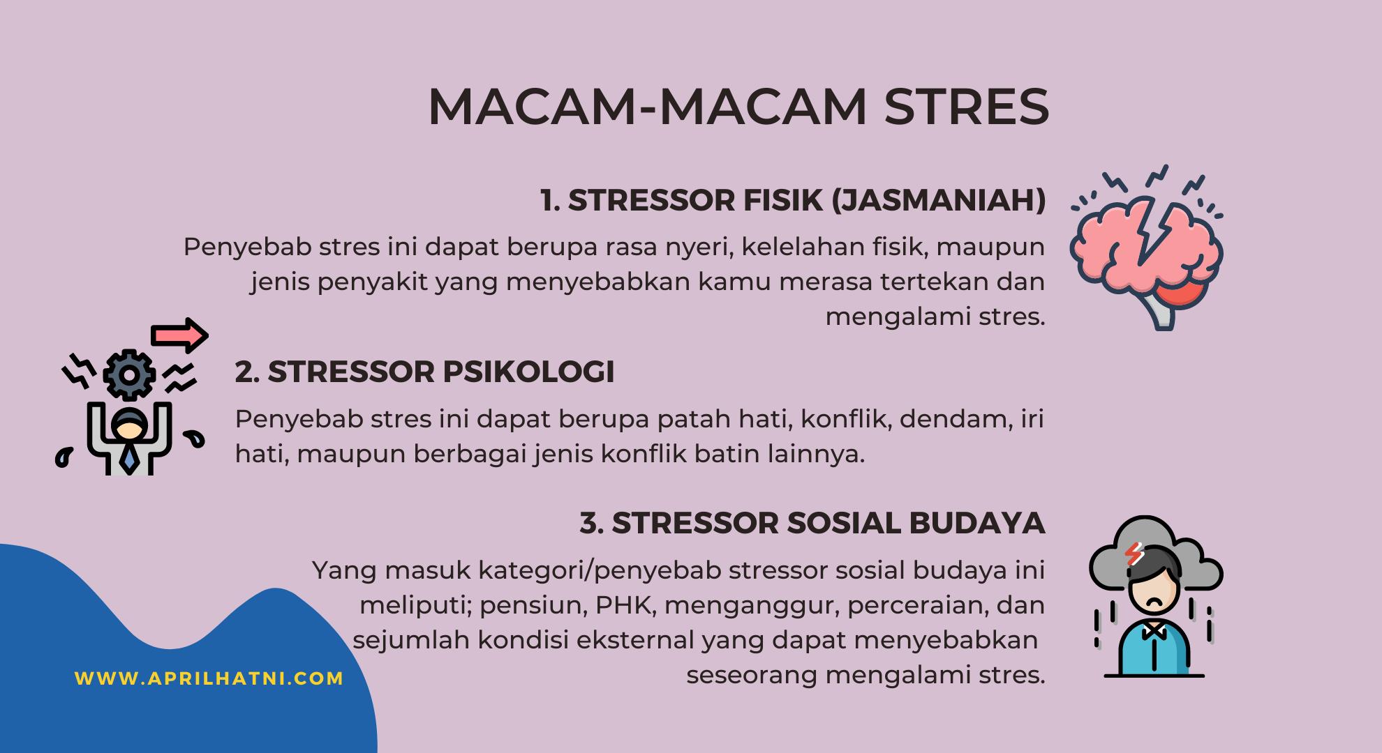 macam-macam stres