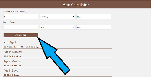how to use age calculator