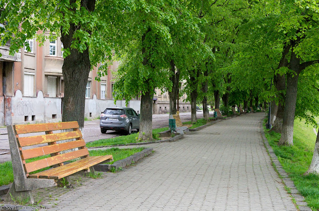 липова алея Ужгороду