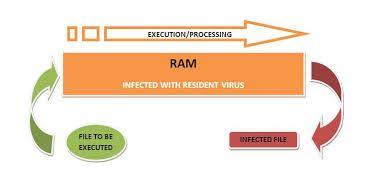 Jenis virus komputer dan pencegahannya