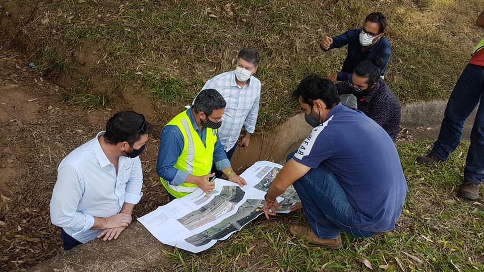 Lombadas e túnel combaterão o atropelamento de tamanduás em Botucatu