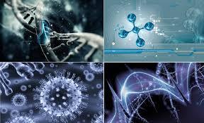 Biyoteknoloji ve Moleküler Biyoloji nedir
