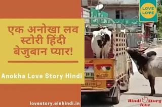 anokha-love-story-hindi-bejuban-pyar-kahani-2021-new-janwaron-ki prem-kahani
