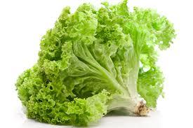 Benefits Of Lettuce For Health