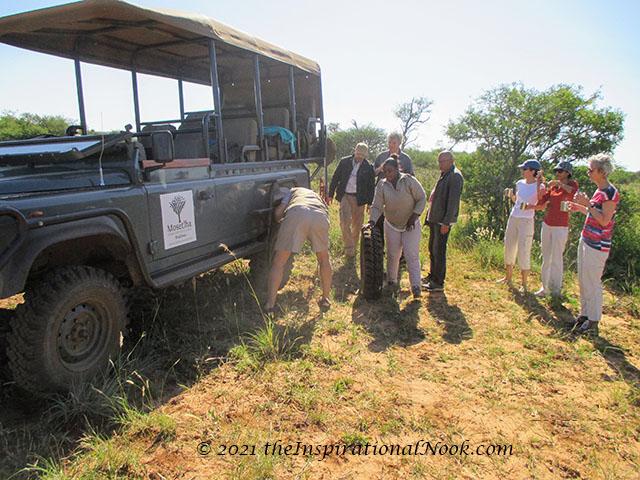 4x4, safari, flat, Mosetlha Bush Camp, Madikwe Game Reserve, South Africa