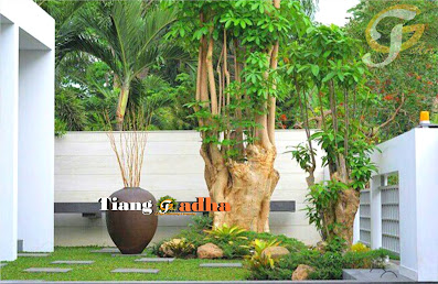 https://www.desaintamansurabaya.com/p/halaman-galeri.html