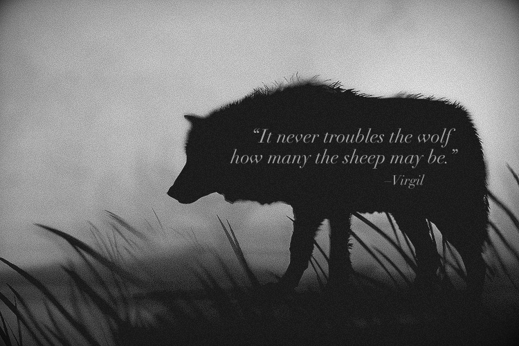 """I Love You, Earth!: """"THE RISE OF BLACK WOLF"""
