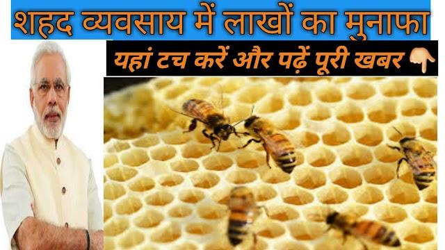 how to start honey business   शहद व्यवसाय शुरू करें और पाएं लाखों का मुनाफा