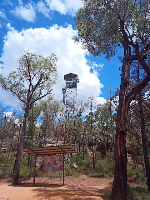 Pilliga Viewing Tower