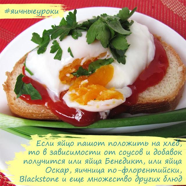 блюда из яйца для детей