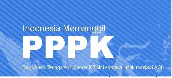 Pahami Dulu Sebelum Mendaftar PPPK di SSCASN.BKN.GO.ID