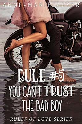You Can't Trust the Bad Boy by Anne Marie Meyer