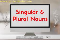 Singular dan Plural Nouns