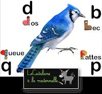 """Affichage confusion """"b, d, p, q"""" avec alphas - LaCatalane"""