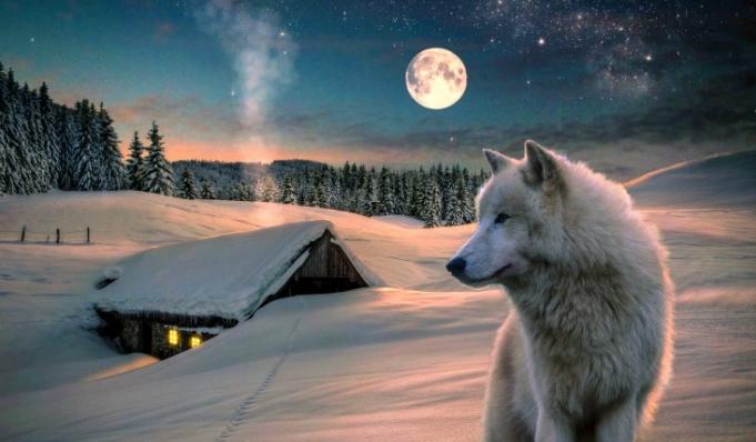 White Wolf : Happy Full Snow Moon 2016: What You Need to ... Kiowa Food