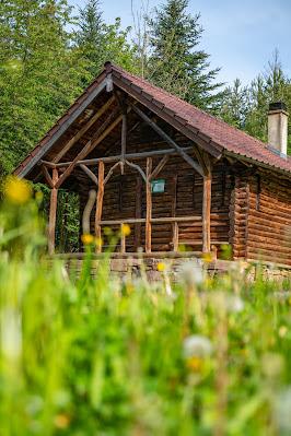 Premiumwanderweg Murgleiter | Etappe 1 von Gaggenau nach Gernsbach | Wandern nördlicher Schwarzwald 09