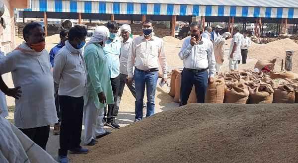 haryana-sarkar-purchasing-kisan-crop-in-ballabhgarh-anaj-mandi-on-msp-news