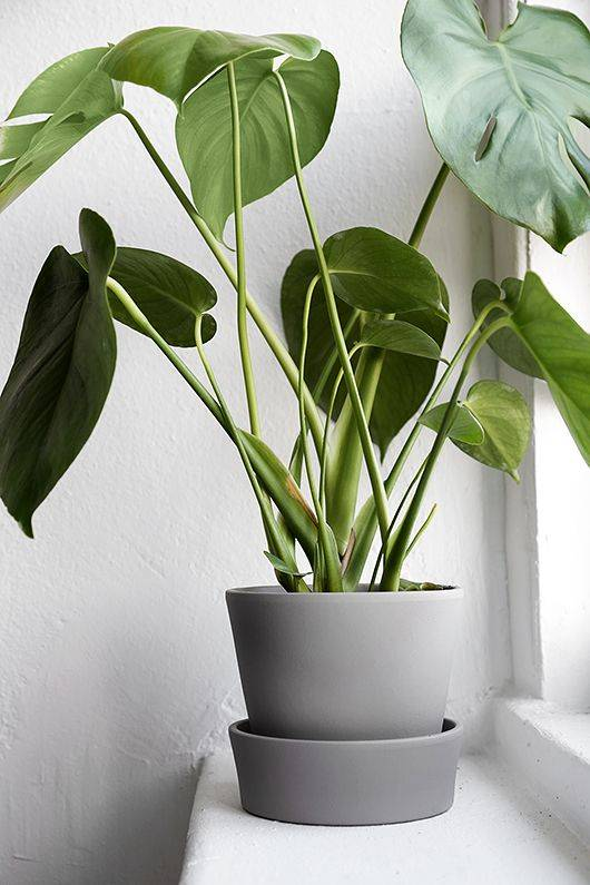 image result for ikea hack planter painted grey