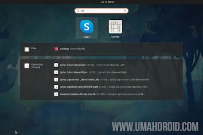 Open Installed Skype Ubuntu Via Launcher