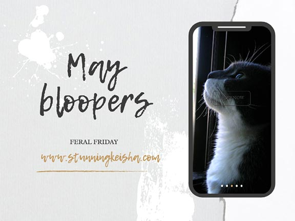 Feral Friday: May Bloopers