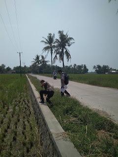 Desa Lemahkarya Digarap Inspektorat Karawang,Ini Ceritanya