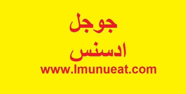 جوجل ادسنس pdf,جوجل ادسنس دخول,جوجل ادسنس بالعربي,جوجل ادسنس والربح,جوجل ادسنس ويوتيوب,جوجل ادسنس ويكي,