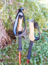 Black Diamond Trekking Poles