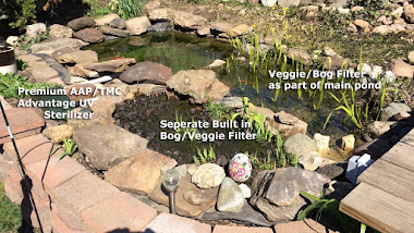 Pond with Veggie-bog filters, separate, corner