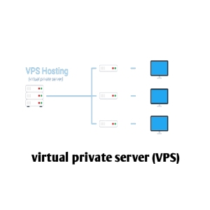 virtual private server in hindi,Host Meaning in Hindi