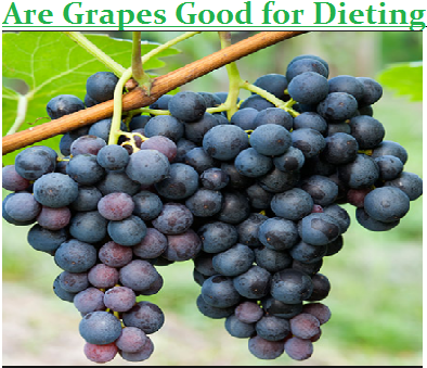 Are Grapes Good for Dieting