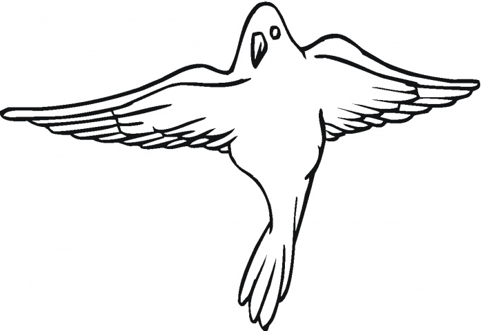 Interactive Magazine: Bird Dove Coloring Pages