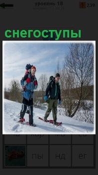 Двое мужчин в зимнее время передвигаются на снегоступах по холму